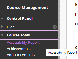 screenshot of accessibility report link