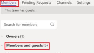 image of Microsoft Teams members and guests tab