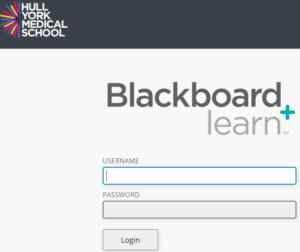 Blackboard log in page