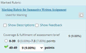 Example grading and feedback