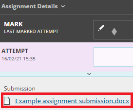 zoomed in grading page view